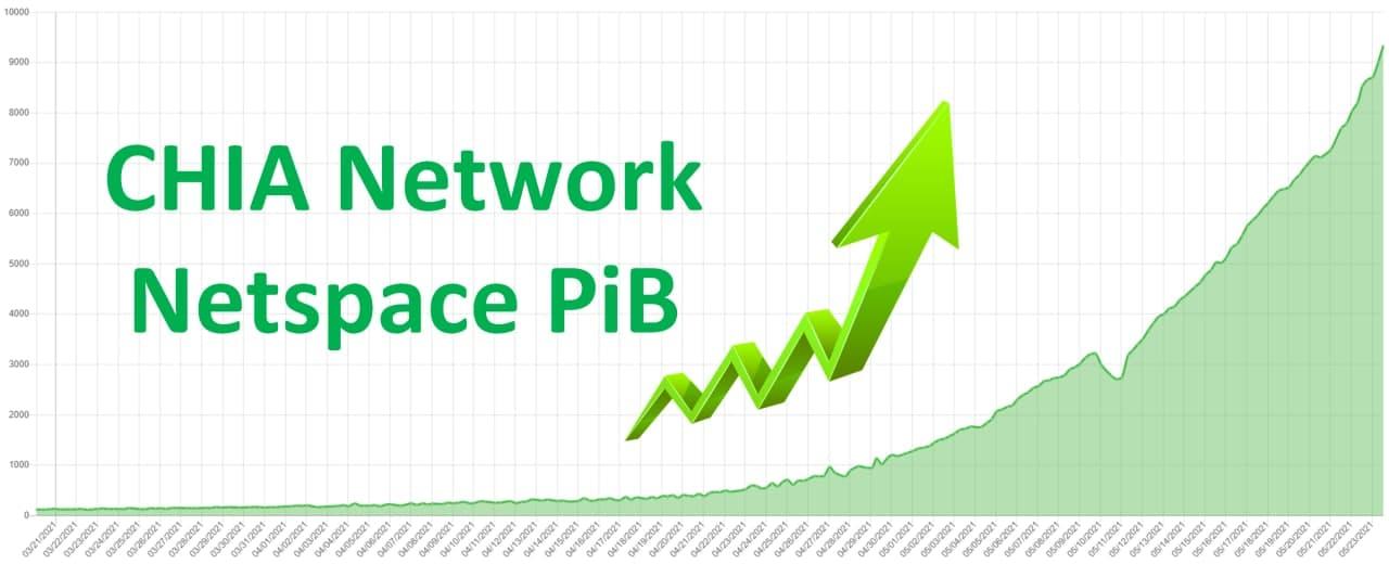 CHIA-Network-Netspace-PiB
